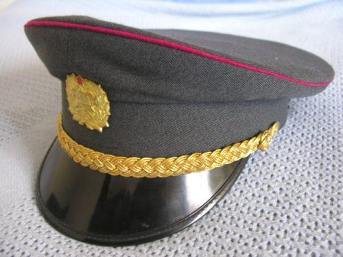 Slovenia Army Officer